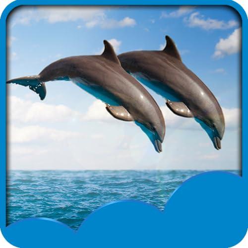 Dolphin Live Hintergrundbilder