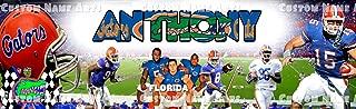 Personalized Florida Gators Football Banner Birthday Poster Custom Name Painting Wall Art Decor