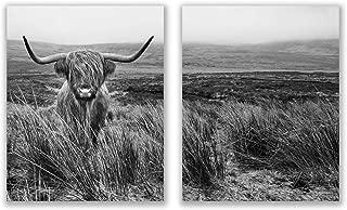 Highland Cow Prints - Set of 2 (8x10) Glossy Farm Wall Art Decor - Black and White Farmhouse Shaggy Scottish Barn Cow Photography