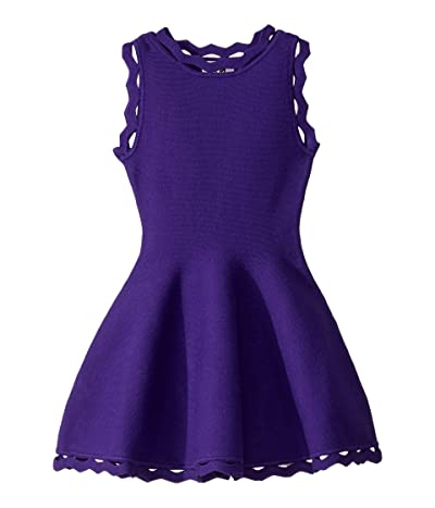 Milly Minis Zigzag Trim Flare Dress (Toddler/Little Kids) (Royal Purple) Girl