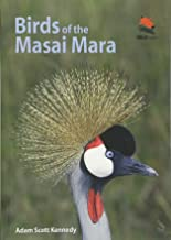 Birds of the Masai Mara (Wildlife Explorer Guides)