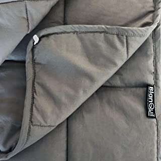 BlanQuil Essentials Weighted Blanket W/Free Cover (Grey, 15)
