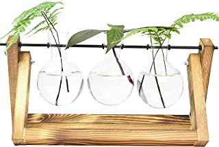 Natura Desktop Plant Terrarium Glass Planter Bulb Propagation Vase with Retro Solid Wooden Stand and Metal Swivel Holder f...