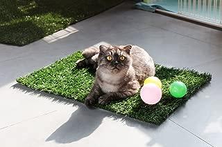 GOLDEN MOON Grass Mat Series Artificial Turf Pet Potty Trainer Indoor Outdoor Replacement Pet Grass Mat