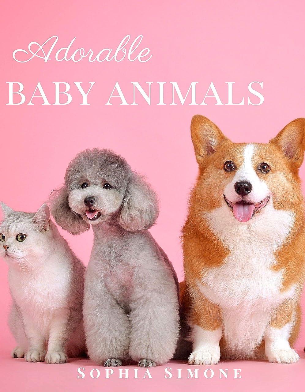 交通チューブ木曜日Adorable Baby Animals: A Beautiful Picture Book Photography Coffee Table Photobook Animal Guide Book with Photos  Images of Cute Kittens, Puppies of Cats and Dogs. (English Edition)
