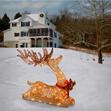National Tree Company Pre-lit Artificial Christmas Décor   Includes Pre-strung White LED Lights and Ground Stakes   Sisal Spl