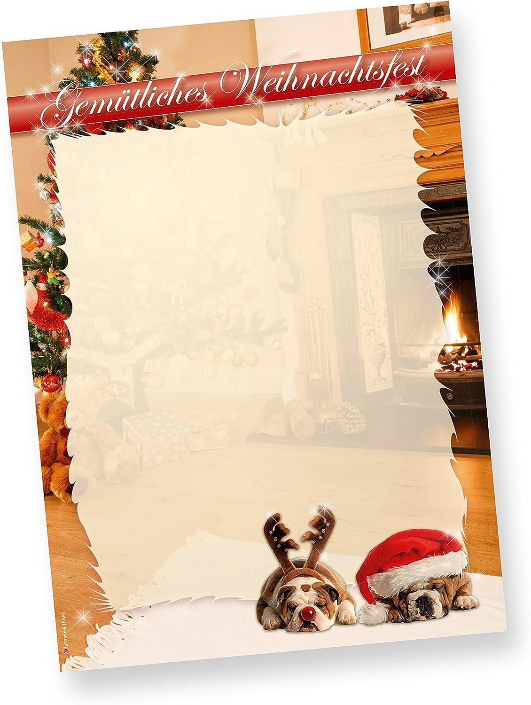 DROLLIGE HUNDE Briefpapier Weihnachten Weihnachtsbriefpapier DIN A4, 500 Blatt B005H7EWUA  | Deutschland München