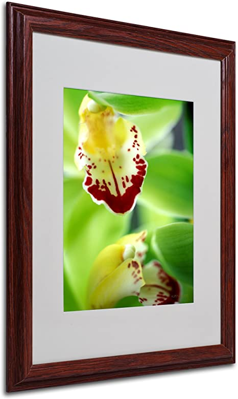Amazon Com Cymbidium Seafoam Emerald Orchid Matted Framed Art By Kathy Yates With Wood Frame 16 By 20 Inch Framed Prints Posters Prints