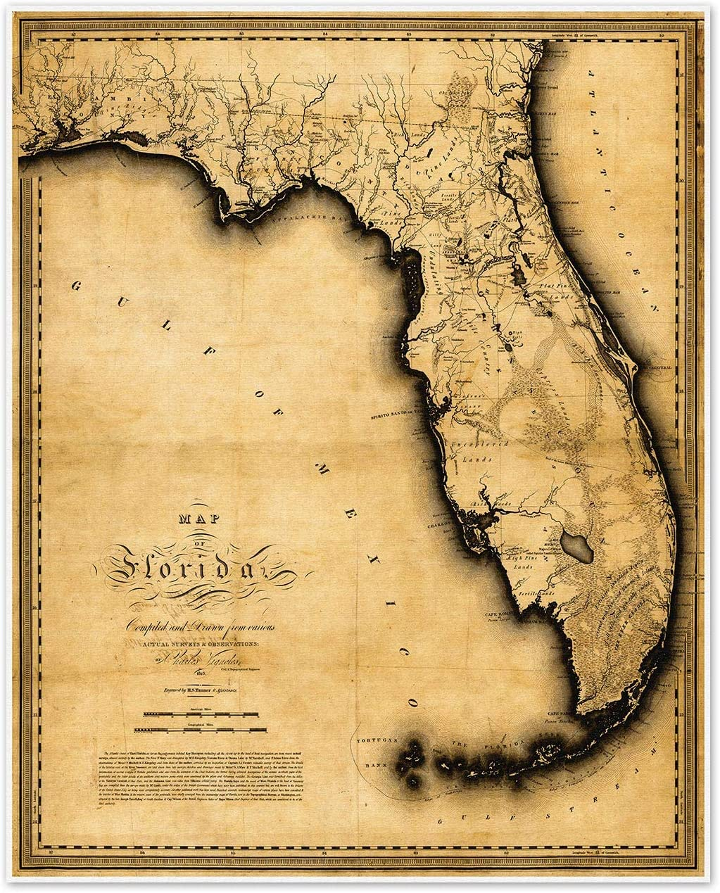 Florida Map by Charles Factory outlet Vignoles Boston Mall circa 1823 24 - inches measures