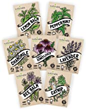 Herbal Tea Seeds Variety Pack - 100% Non GMO – Catnip, Chamomile, Lavender, Mint, Lemon Balm, Bee Balm, Echinacea. Medicinal Seeds for Planting in Your herb Garden