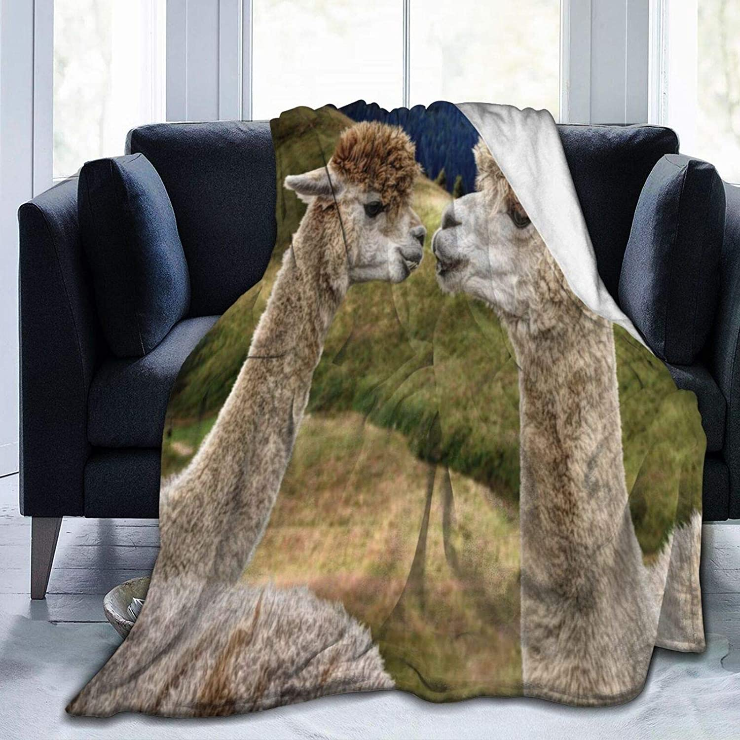 Fuzzy Throw Blanket Plush Fleece Blankets for To Al store sold out. Unisex Adults