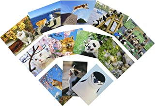 ピンナップ 人気柄 ポストカード 12種 各1枚 計12枚 セット 写真 岩合光昭 動物
