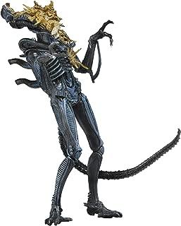 "NECA - Aliens 7"" Scale Action Figure - Series 12 Xenomorph Warrior Blue (Battle Damaged)"