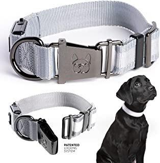Country Living by Silver Paw Light Up Dog Collars, LED USB Rechargeable Dog Collar, Waterproof & Durable (Grey, M)