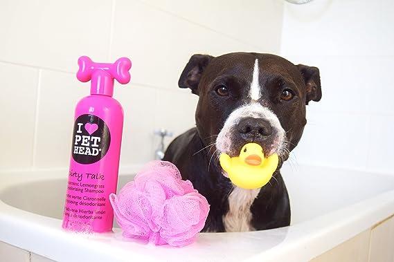 Pet Head Dirty Talk Deodorizing Shampoo: Amazon.es: Productos ...