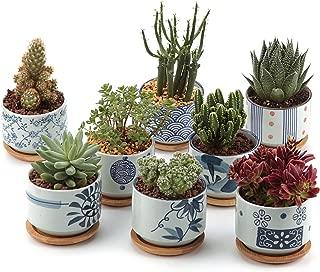 T4U Conjunto de 8 Serie de cerámica de Estilo japonés Cer