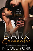 Dark Encounter (Secrets Of The Night Book 2)