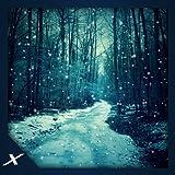 Virtual Snowstorm - Free