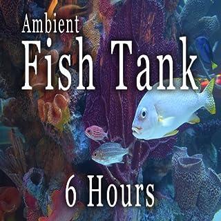 Relaxing Fish Tank - 6 hours