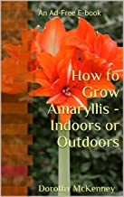 How to Grow Amaryllis - Indoors or Outdoors: An Ad-Free E-book