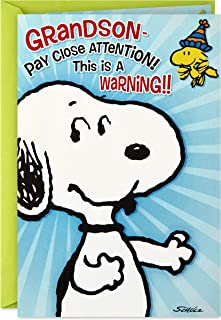 Hallmark Peanuts Pop Up Birthday Card for Grandson (Birthday Hug)