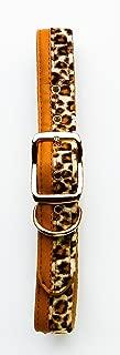 Bret Michaels XL Adjustable Leopard Print Dog Collar