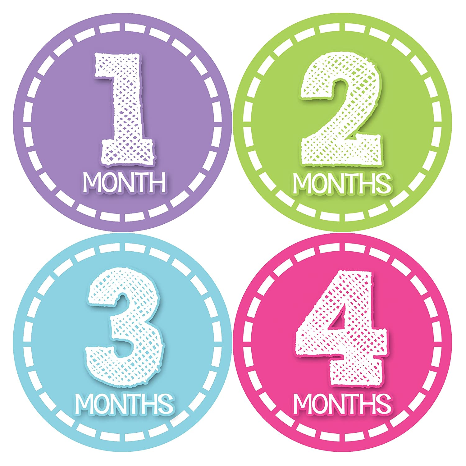 Baby Monthly Stickers | Baby Milestone Stickers | Newborn Stickers| Month Stickers for Baby Girl | Baby Girl Stickers | Newborn Monthly Milestone Stickers (Style 376)