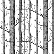 black and white forest wallpaper for walls