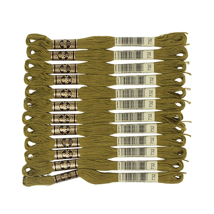 DMC 6-Strand Embroidery Cotton Floss, Olive Green