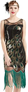20's Vintage Peacock Sequin Fringed Party Flapper Dress