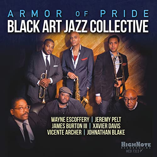 Image result for armor of pride black