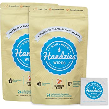 Handzies Natural Soap and Water Hand Wipes, Individually Packaged Singles, Tangerine 24ct, 2Pack (48 Individually Packaged Wipes)