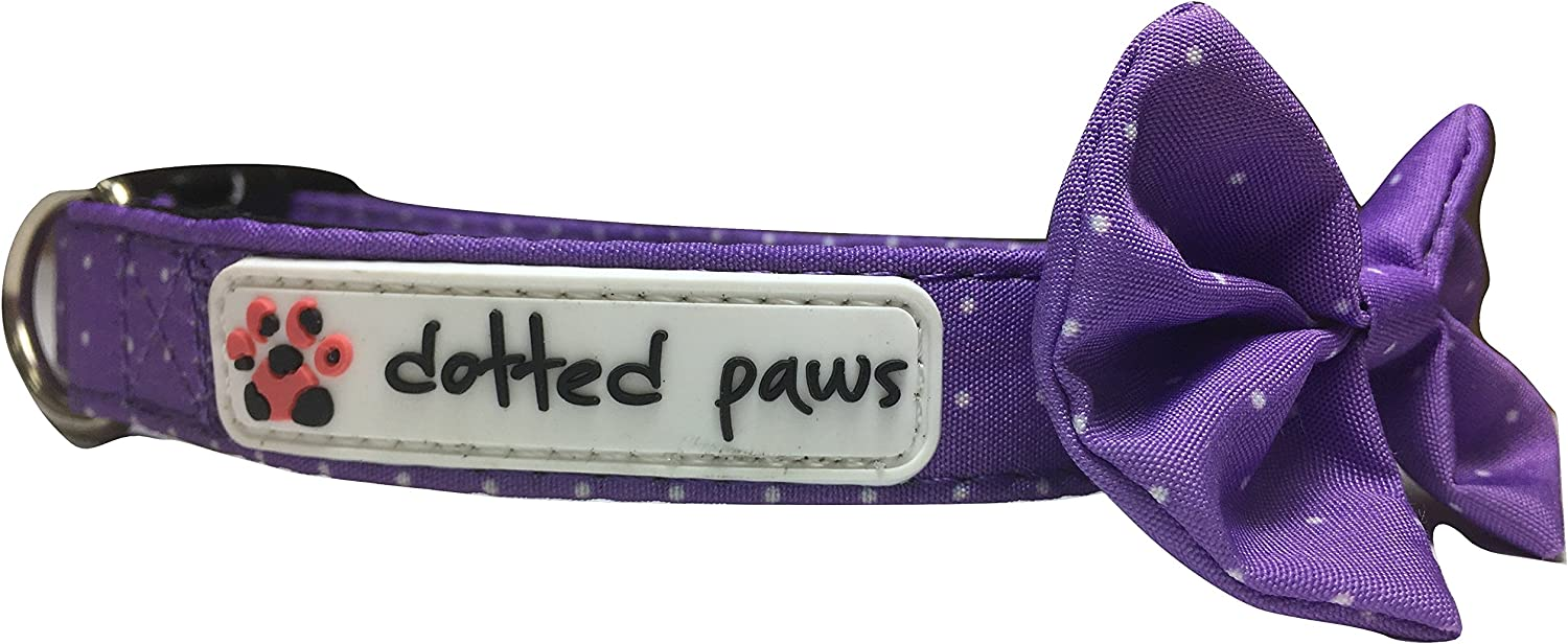 Dotted Paws Dog Collar with Bow Tie Cute Polka Dots Print Neoprene Padded (Medium, Dotted Purple)