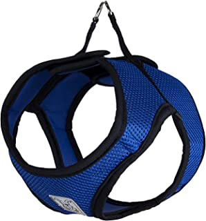 RC Pet Products Cirque Soft Walking Step In Dog Harness