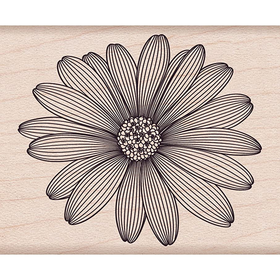 Hero Arts Etched Daisy Woodblock Rubber Stamp