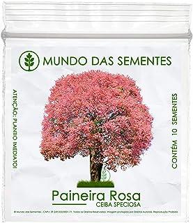 10 Sementes de Paineira Rosa – Ceiba speciosa