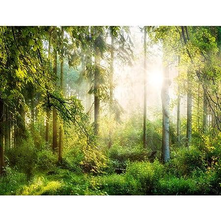 Fototapeten 396 X 280 Cm Wald Sonne Vlies Wanddekoration Wohnzimmer Schlafzimmer Deutsche Manufaktur Gelb Grun 9176012a Amazon De Baumarkt