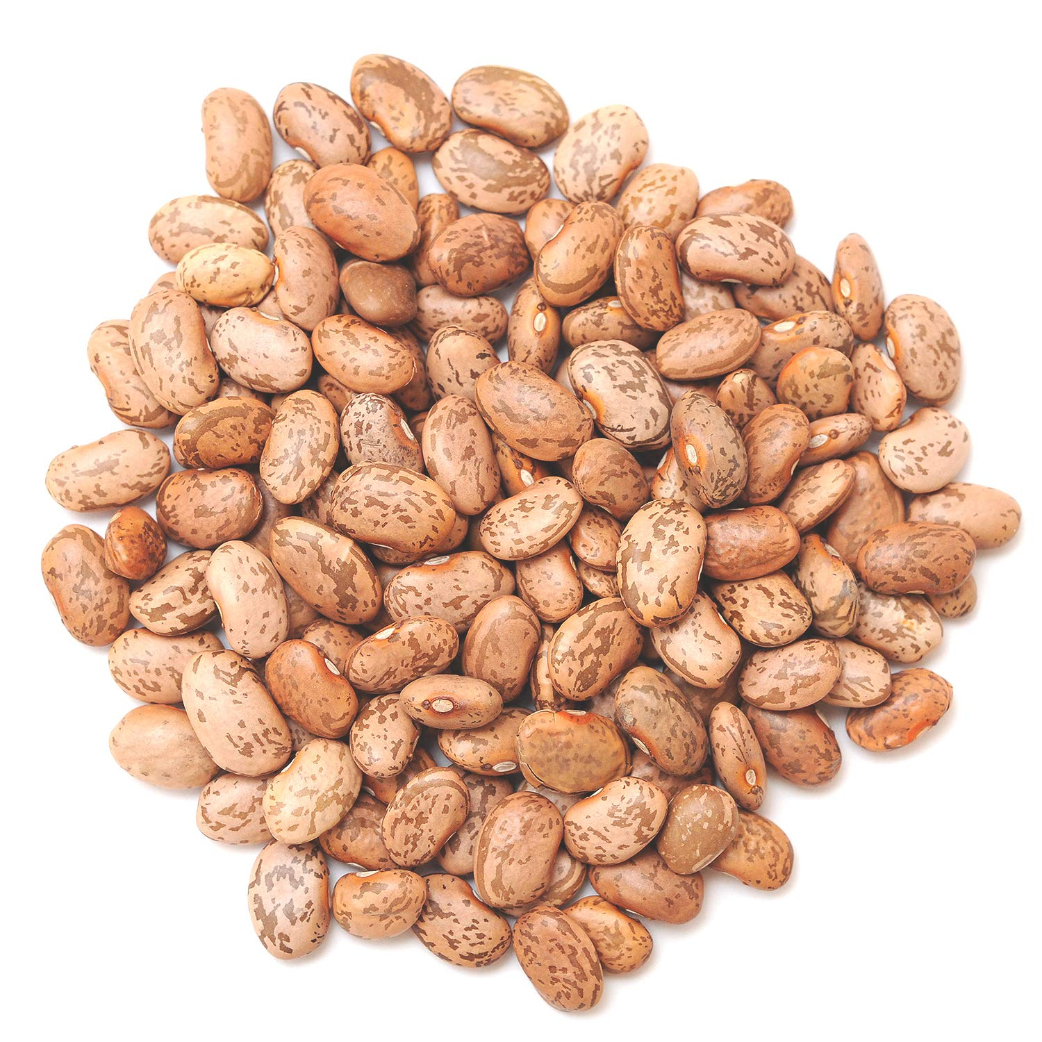 FOTS - Pinto Beans Dry Bulk Pounds 16 U Perfect Max 63% OFF Refried Store