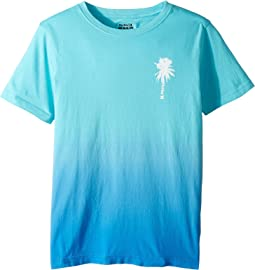 Hurley Kids - Trajectory Gradient Tee (Big Kids)