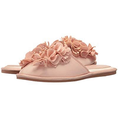 Dolce Vita Hai (Pink Floral Neoprene) Women