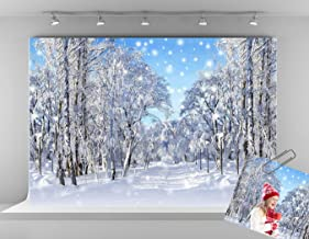 Kate 7x5ft Winter Wonderland Photography Backdrops Frozen Snow Backdrop Snowflake Photo Backgrounds Holiday Party Backdrops for Photographer
