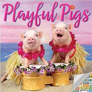 funny pig calendar
