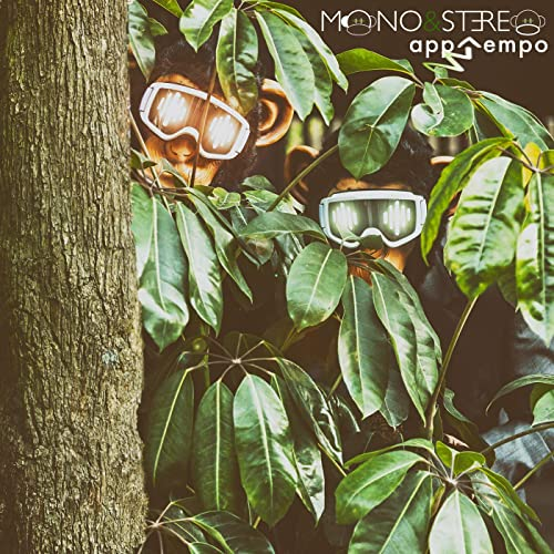 AppTempo - Mono & Stereo