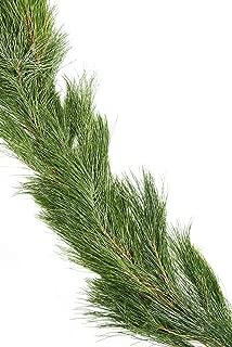 Real White Pine Garland 25', From Hallmark