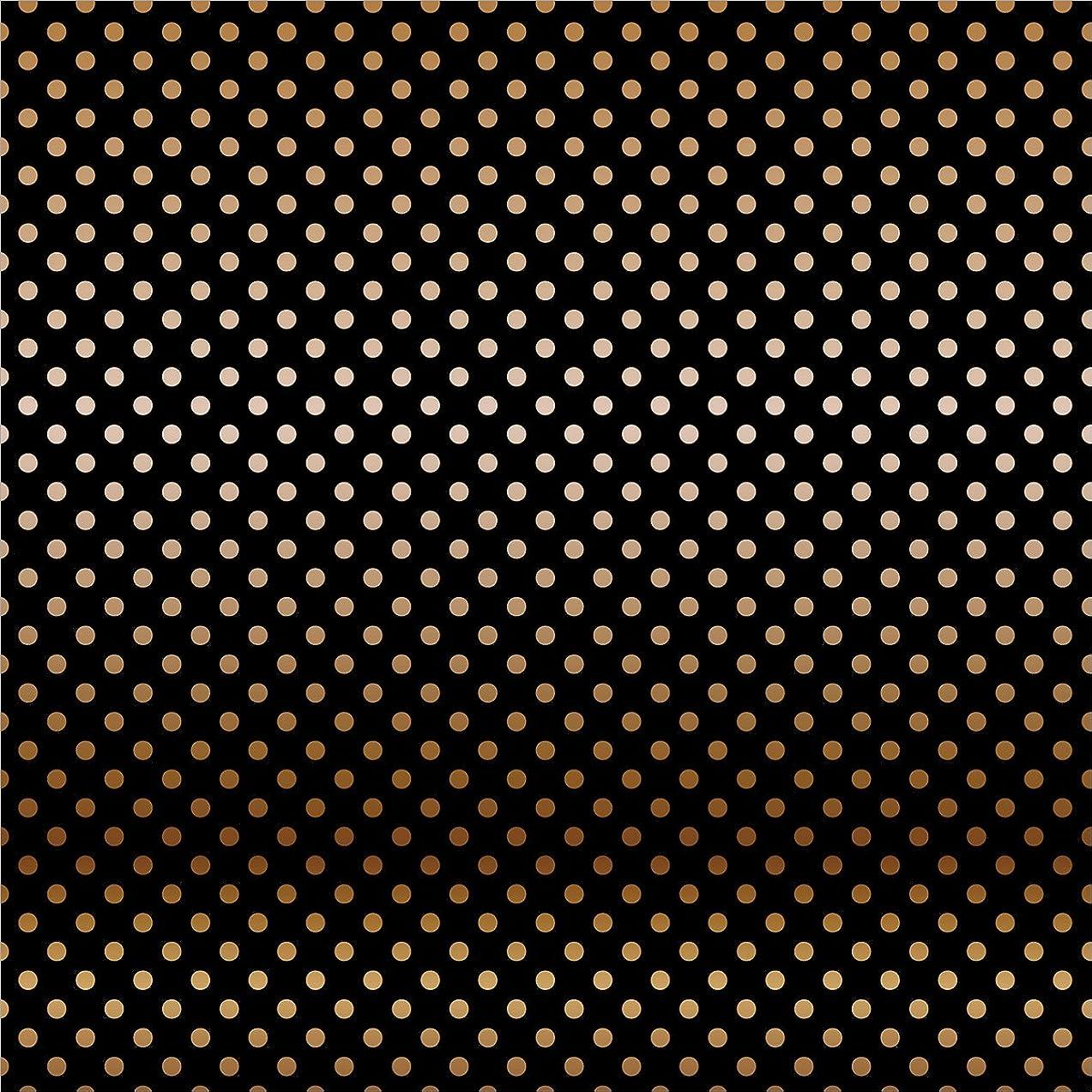 Echo Park Paper CBFC306 Foiled Dots & Stripes Cardstock (15 Sheets Per Pack), 12