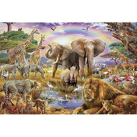 ジャングル 1000