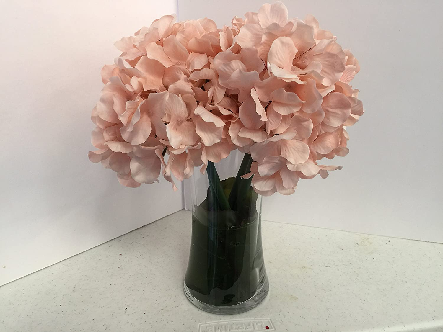 Cream Pink Hydrangeas Max 82% OFF Sales of SALE items from new works in a Medium Tall Glass Vase
