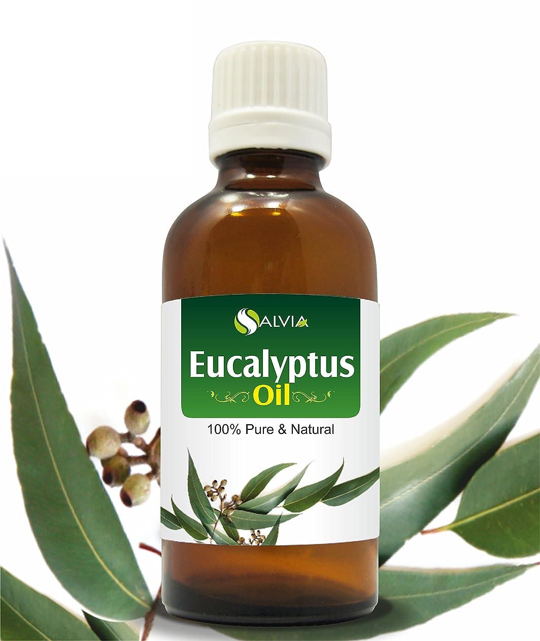 小さなレオナルドダ優先権EUCALYPTUS OIL 100% NATURAL PURE UNDILUTED UNCUT ESSENTIAL OIL 30ML