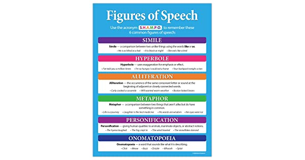 Laminated Safety Magnets 8 Parts of Speech Language Arts Poster 17 x 22 inches