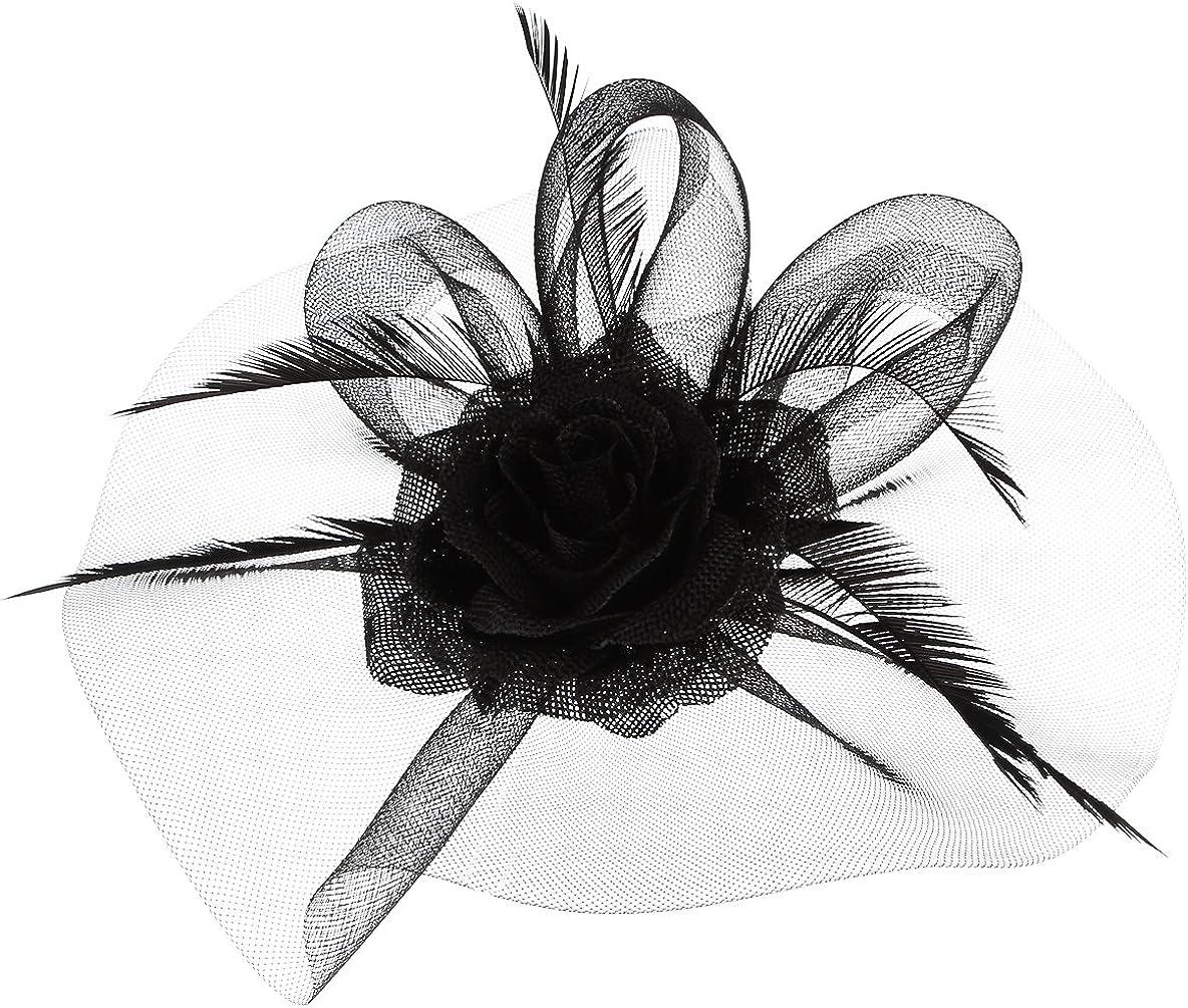 GEMVIE Women Mesh Fascinator Kentucky Derby Cocktail Hat with Clip